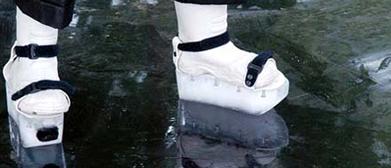 iceskate shoe