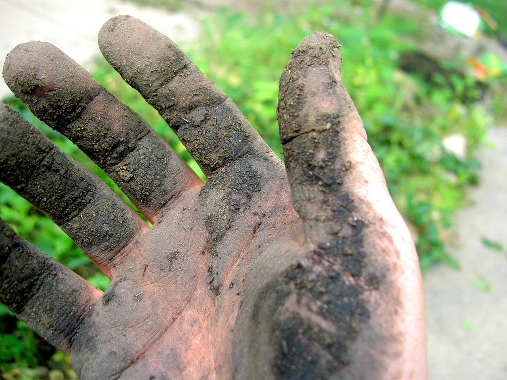 Soil #1