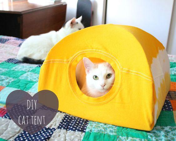 TSCat Tent